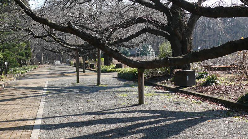 20070119-1.jpg